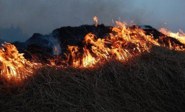 Китайские фермеры травят дымом жителей Хабаровска