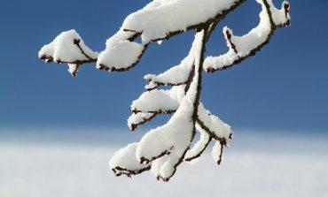 Зимним ясным днем