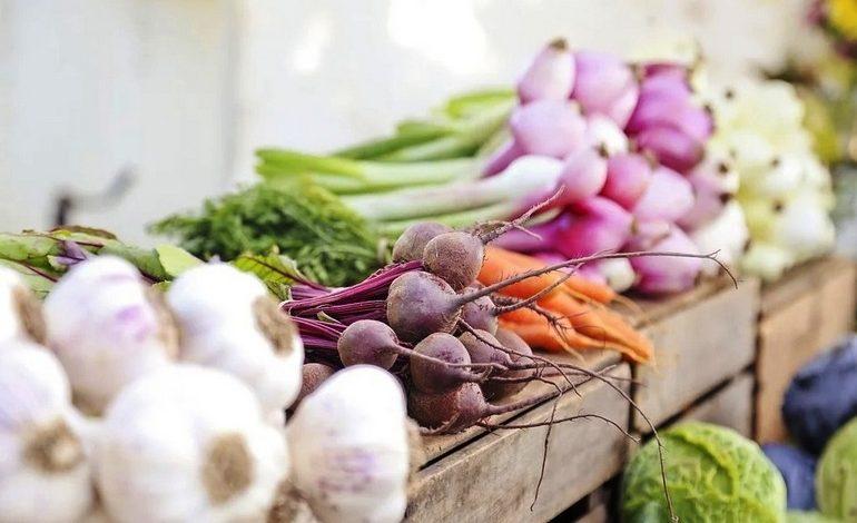 Решаем «овощной» продовольственный вопрос на своём участке