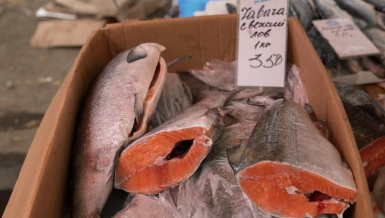 Председатель комитета рыбного хозяйства Сергей Рябченко: Людям нужна дешёвая рыба
