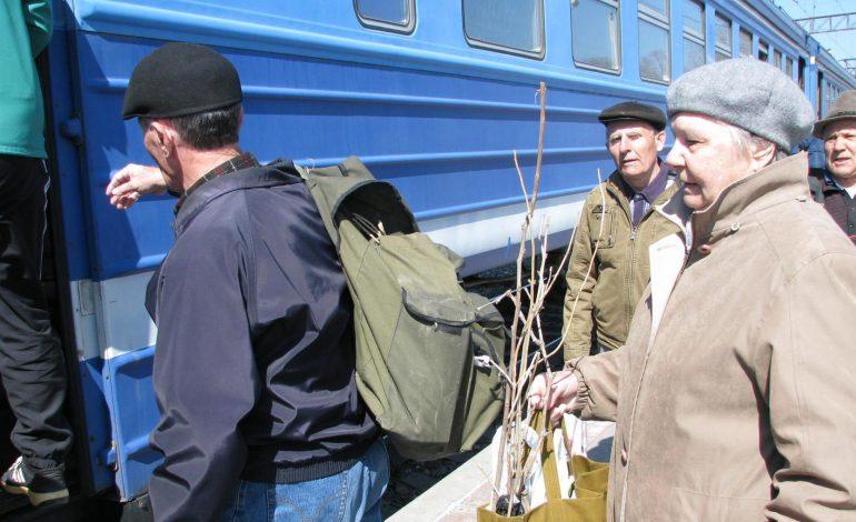 Дачное расписание электричек, автобусов и теплоходов в Хабаровске на 2021 год