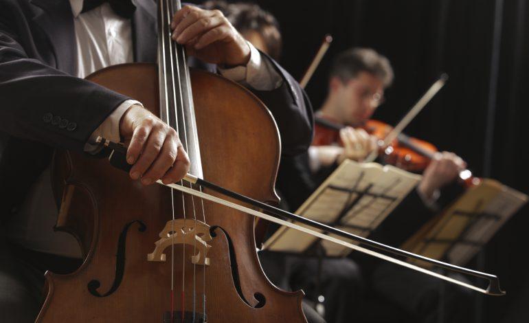 Дальневосточный академический симфонический оркестр (6+), 23 апреля, Хабаровская краевая филармония, 17-00