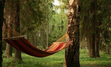 Где хабаровчанину отдохнуть на природе