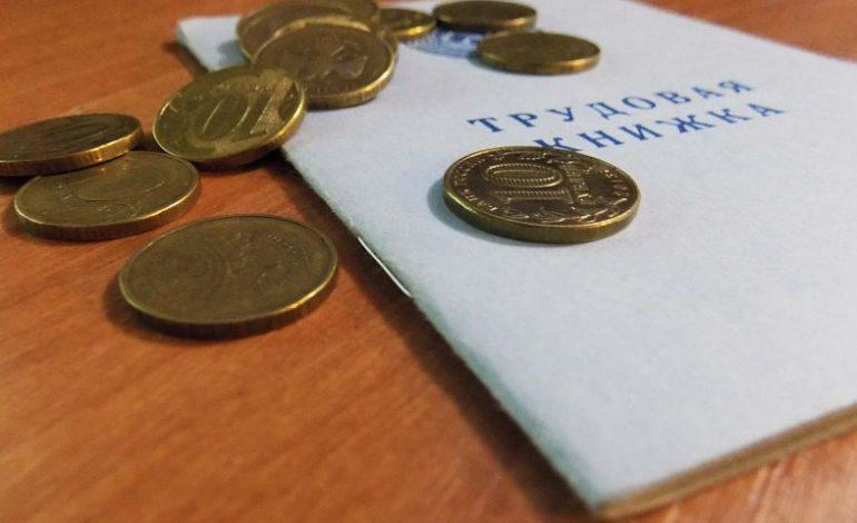 Нетрудовые доходы – на что может рассчитывать хабаровский безработный