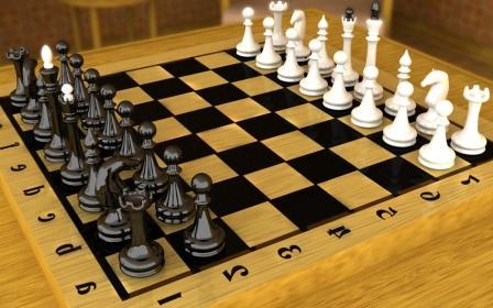 В Хабаровске определили лучших городских шахматистов