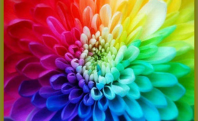 Гадаем по цвету сами себе