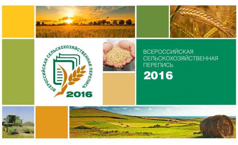 1 июля началась Всероссийская сельскохозяйственная перепись
