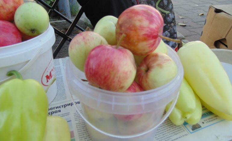 Покупаем яблоки. Китайские или местные – что выгоднее?
