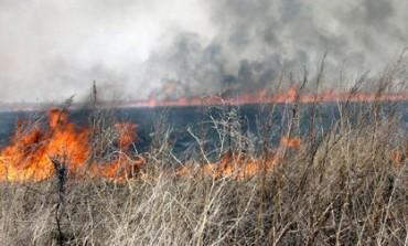 Дым над водой: хабаровчане уже ощущают первые последствия осенних палов травы