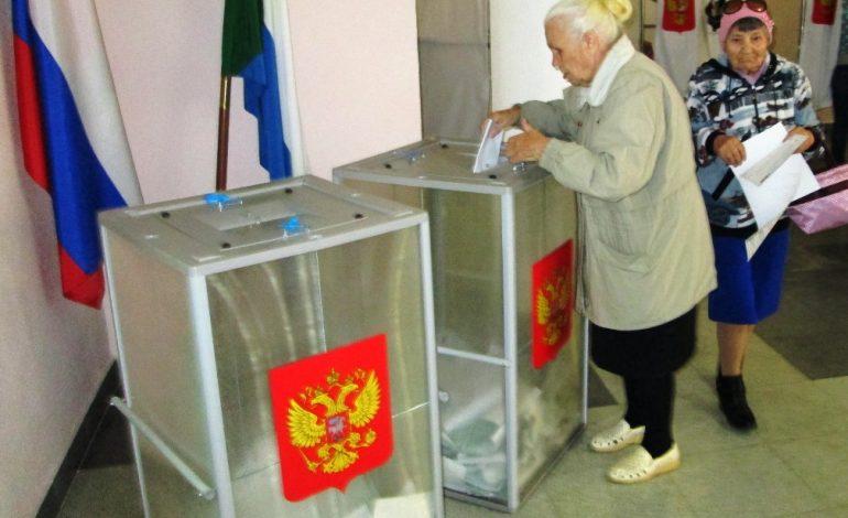Выборы по-хабаровски: без сюрпризов и капризов