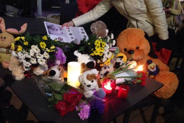 Из-за хабаровских живодерок в Москве прошел митинг против убийства животных (ФОТО)