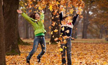 Где хабаровским школьникам с пользой провести осенние каникулы