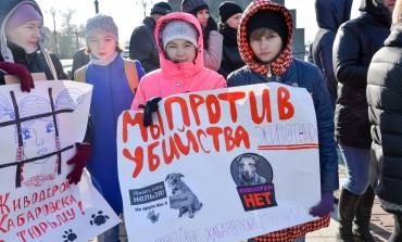Хабаровские зоозащитники провели пикет против живодерства на Комсомольской площади