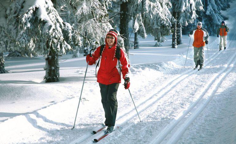 Лыжные трассы появятся в хабаровских парках в этом году