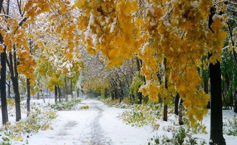 О погоде в Хабаровске и крае на четверг, 27 октября