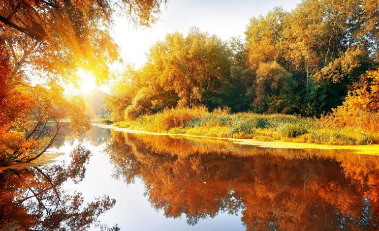 О погоде в Хабаровске и крае в пятницу, 21 октября