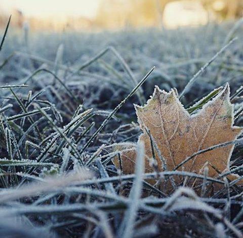 О погоде в Хабаровске и крае в четверг, 10 ноября