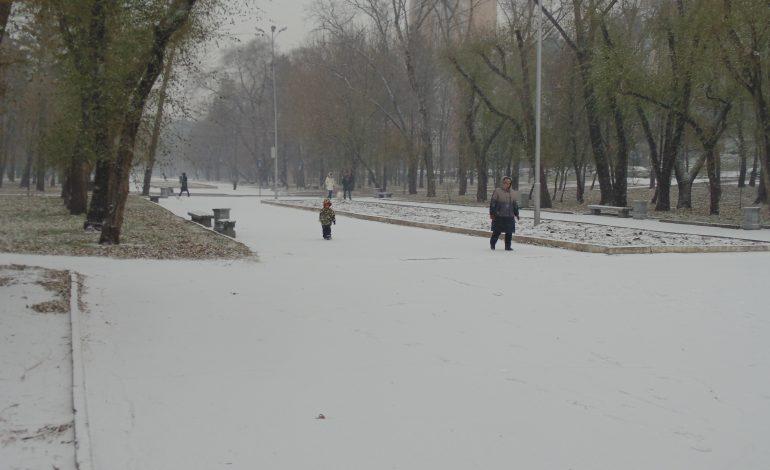 Прогноз погоды в Хабаровске и крае на пятницу, 4 ноября