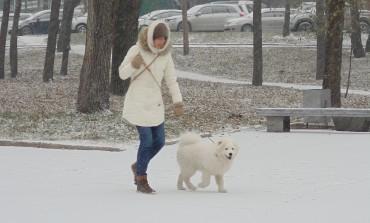 В Хабаровске наконец-то идет снег (ФОТОРЕПОРТАЖ)