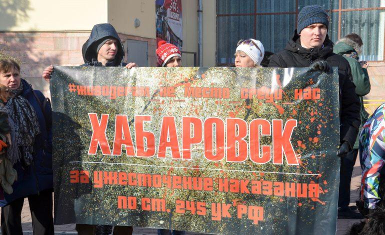 В Хабаровске прошел митинг против жестокого обращения с животными