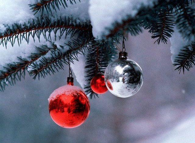 Хабаровчан и гостей города ждет теплая погода на новогодних выходных
