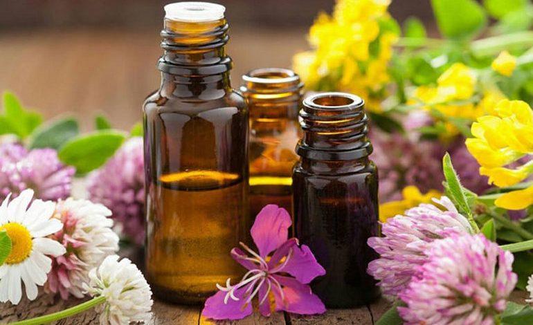 В мире ароматов: как создать здоровую атмосферу