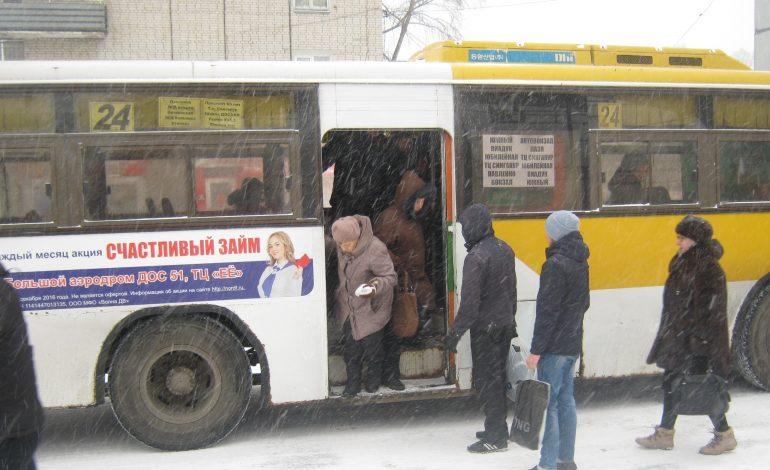 Уровень транспортной доступности в Березовке оказался выше среднего