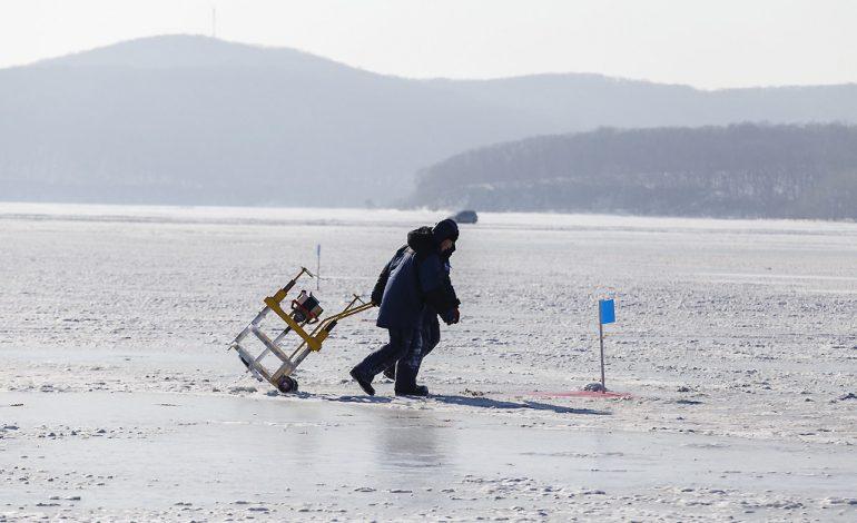 Чтобы Арктика стала ближе