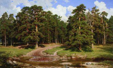 «Сосновый бор» Ивана Шишкина: из бильярдной императора в Дальневосточный художественный музей