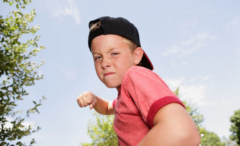 Детская агрессия: инструкция по перевоспитанию