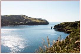 Клуб «АМИСТ»: от Лебяжьего озера до острова Тюленей