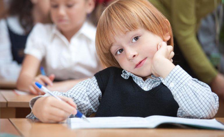 Золотая дорога к знаниям: сколько стоит собрать ребенка в школу