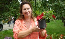 Выставка «Городские цветы» прошла в Хабаровске