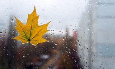 Погода на выходные: в Хабаровске будет дождливо
