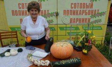 """Внимание, газета для дачников """"Солнышко"""" объявляет конкурс"""