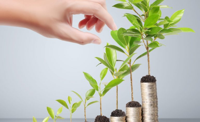 Как приумножить деньги с КПК «Восточный Фонд Сбережений»