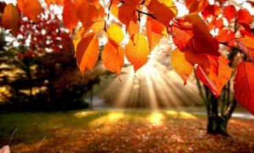 Погода на выходные: солнце ожидает хабаровчан