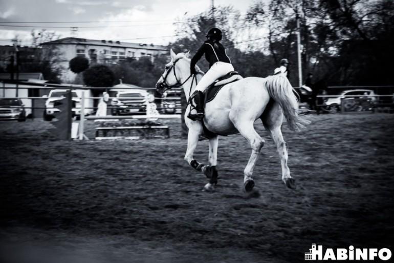конный спорт хабаровск
