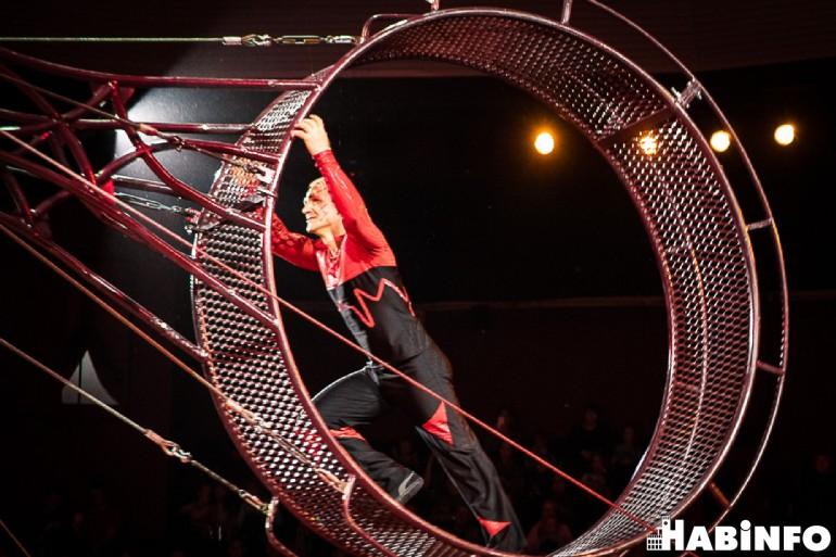 император львиц цирк фото хабаровск