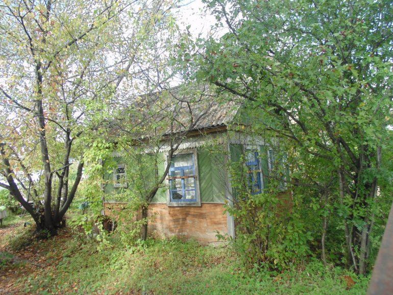 снт пчелка старые дома