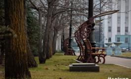 Осень в Хабаровске: последние дни бархатного сезона
