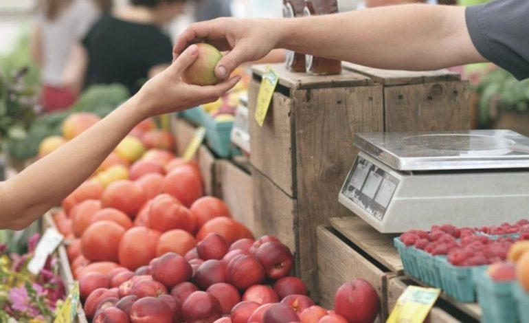 Новая партия фруктов из Киргизии прибыла на этой неделе в Хабаровск