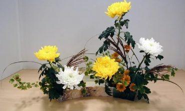«Вампиризм» букетов и искусственных цветов - верить или просто любоваться?