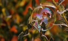 Какой сегодня праздник: День кредитных союзов и День раздавленных пузырей