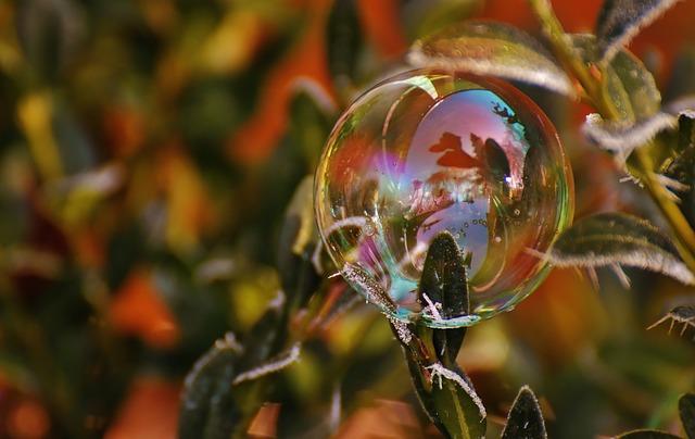 День кредитных союзов и День раздавленных пузырей