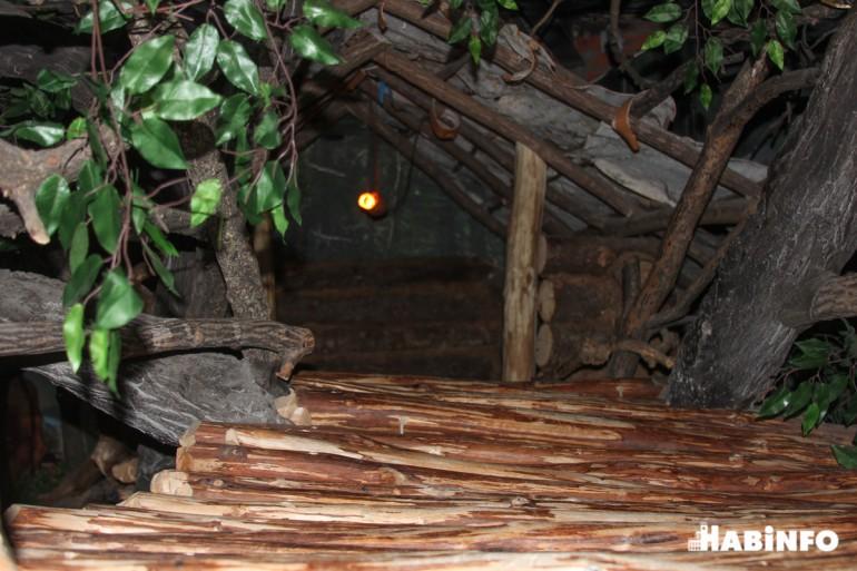 музей археологии хабаровск