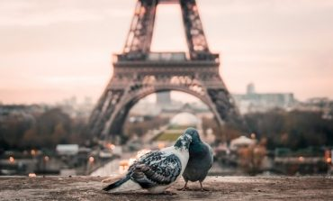 Фестиваль короткометражного кино «Парижские сезоны» пройдёт в Хабаровске
