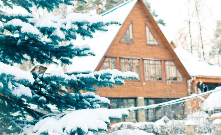Готовим сани и точим коньки: где хабаровчанам провести новогодние выходные