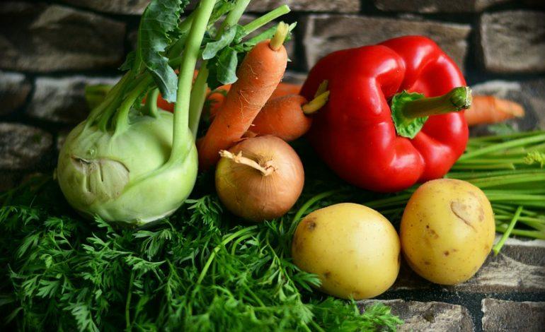 Бизнес на гектаре: выращивание овощей круглый год