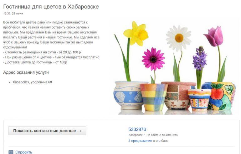 необычные услуги хабаровск гостиница цветов